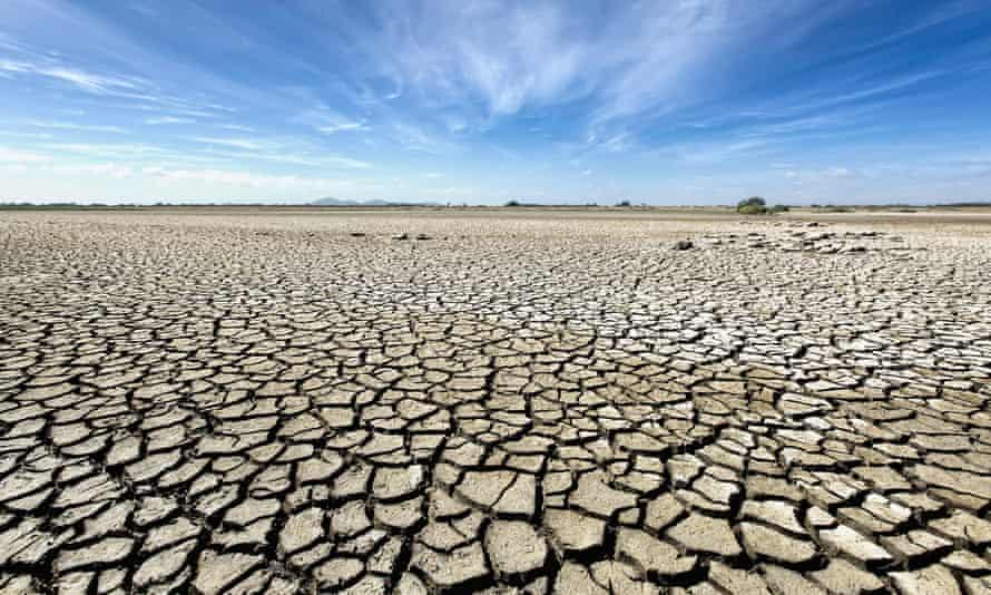 Barren plain with parched soil