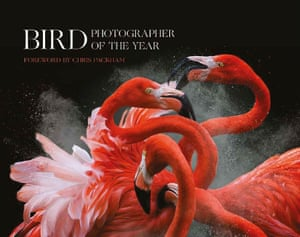 Book cover: 2018 bird photographer of the year