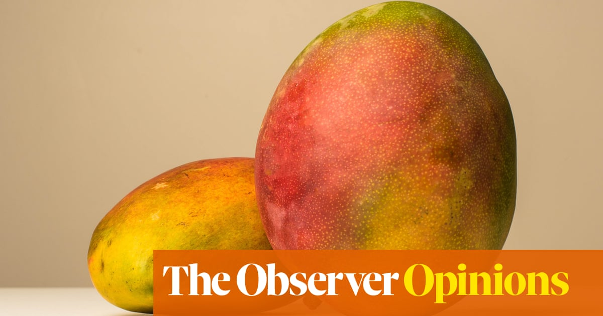Bite it, squeeze it, suck it… The right way to eat mango