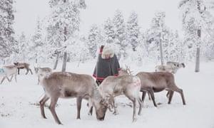 Jussa Seurujärvi feeding reindeer.