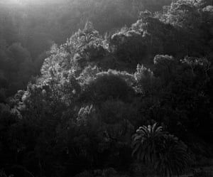 'Dark beauty and sublime stillness' … an Awoiska Van Der Molen silver gelatin print.