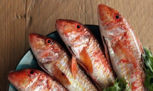 Red mullet work well for proper Frencnh fish soup.