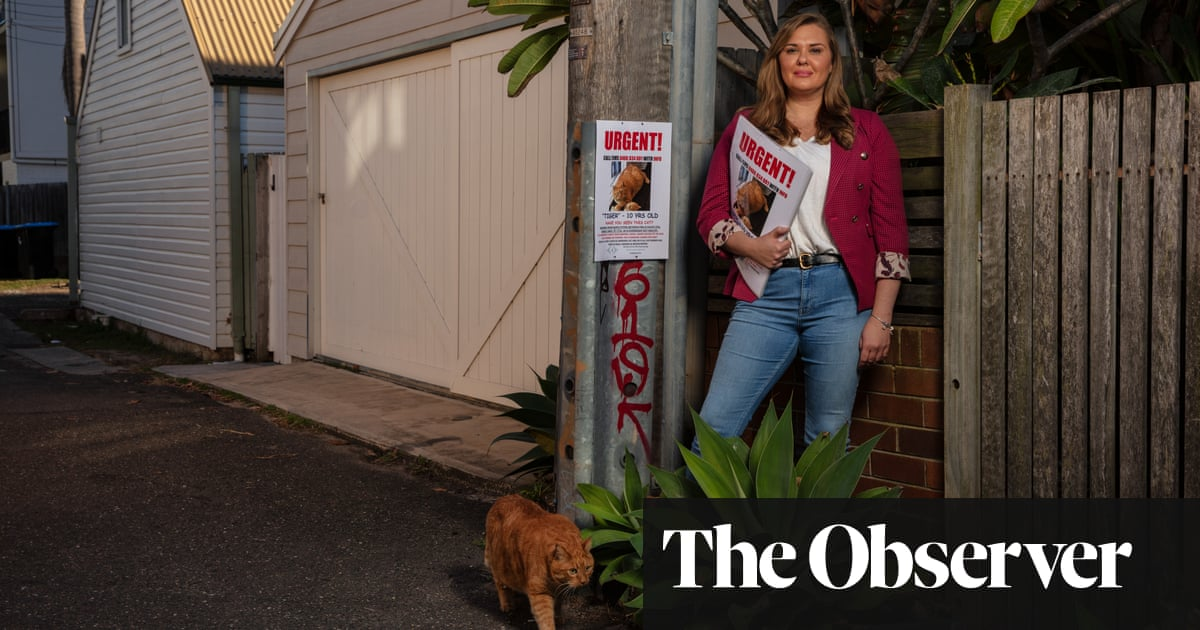 Clues and claws: meet the ace pet detectives