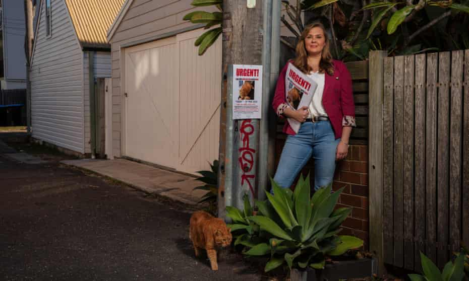 'Won't someone please help me to find Tiger?' Anne-Marie from Sydney, who is ready to track down all manner of domestic pet.