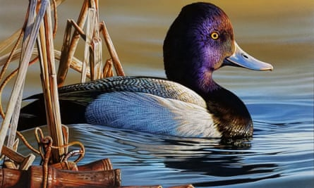 This painting of a lesser scaup and a lost duck call won the 2020 Duck Stamp contest.