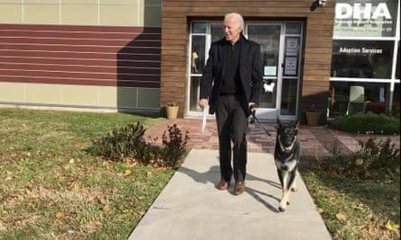 Joe Biden and his German shepherd Major