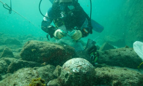 Marine archaeologists discover rare artefacts at 1503 shipwreck site