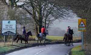 Horses from Nicky Henderson's Seven Barrows stables at exercise
