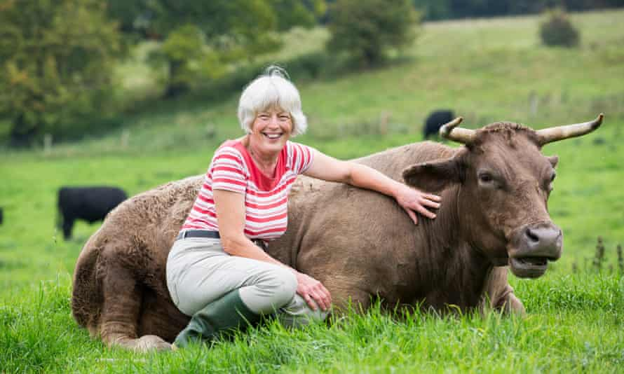 Rosamund Young with Dot, one of the 113 grass-fed cows she farms at Kites Nest on the flanks of the Cotswolds.