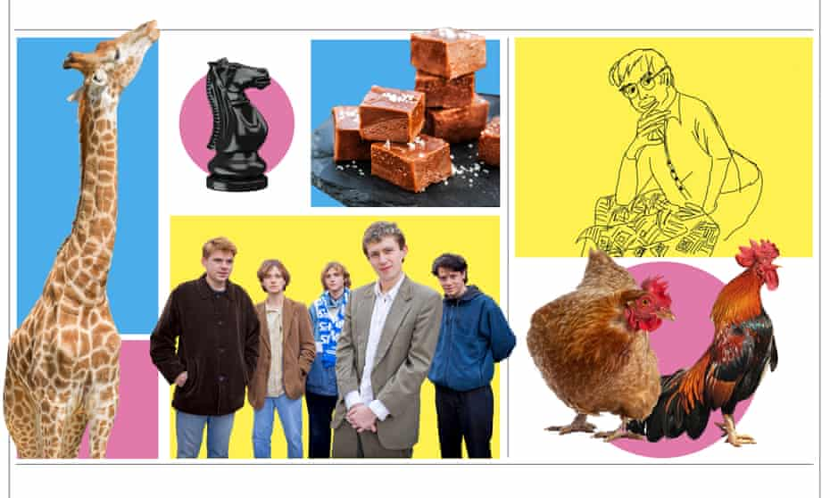A giraffe; a chess knight; fudge; a line drawing; chickens; the band Shame