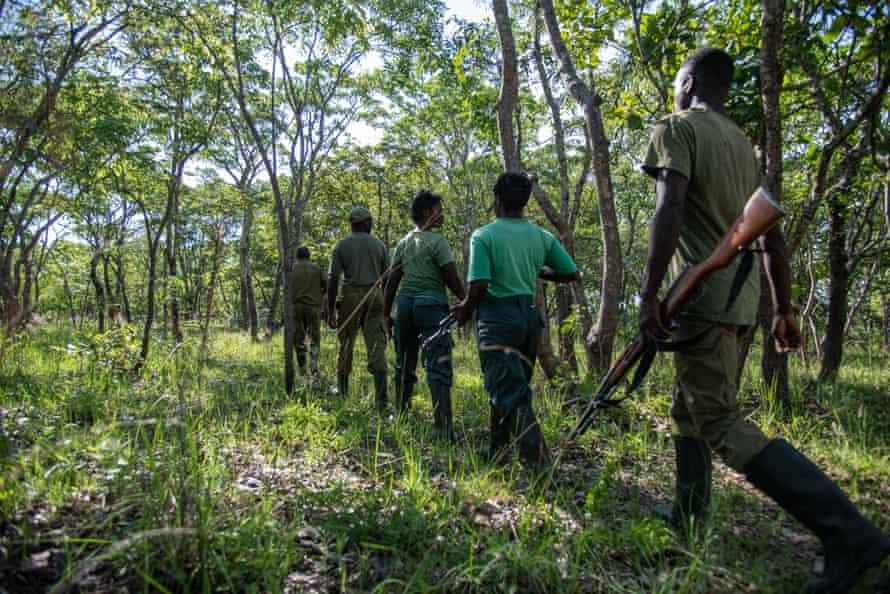 A patrol unit of Kasanka park scouts