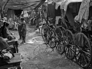 Lines of disused rickshaws are left to rot in the hot and humid weather of Kolkata.