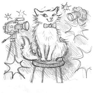 Illustration from Marshmallow Pie the Cat Superstar by Clara Vulliamy.