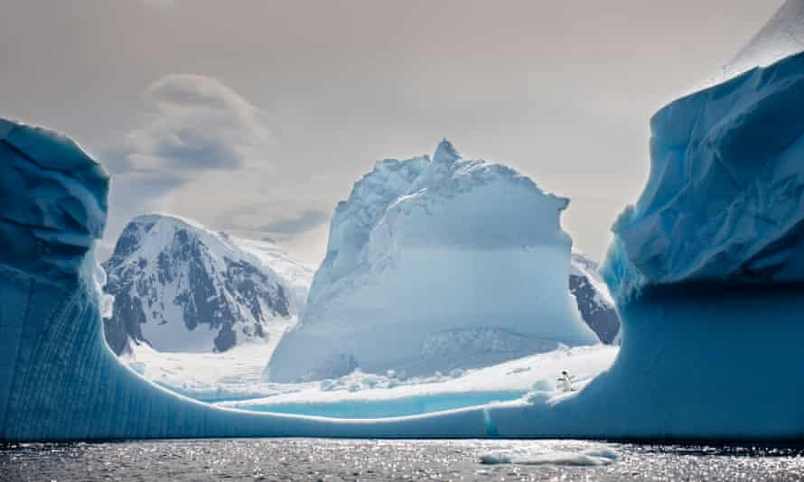 Icebergs in Yalour Islands in the Antarctic peninsula.