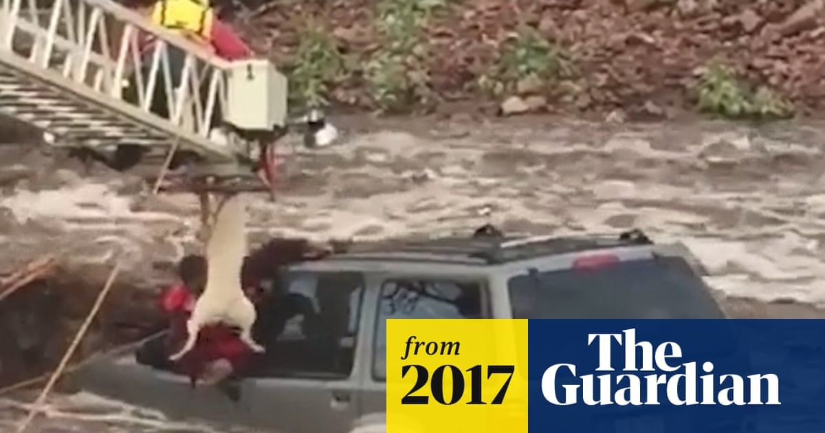 Man and dog pulled from car caught in Colorado floods – video | US