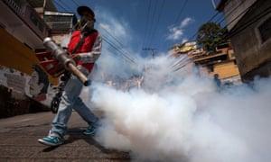 Zika virus Venezuela