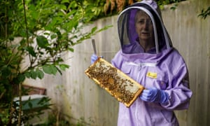 Anne Rowberry, chair of the British Beekeepers Association.