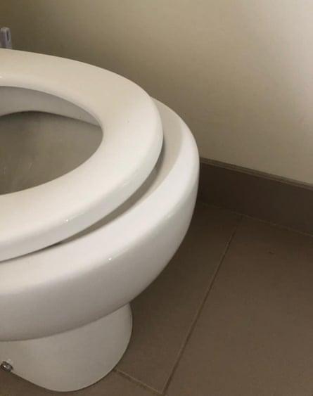 Brigid Delaney's replacement toilet seat.