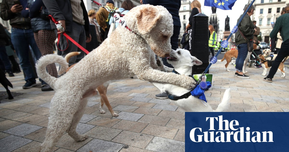 Bark if you want to stop Brexit: Wooferendum – in pictures
