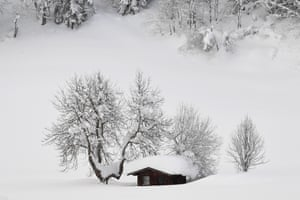 Filzmoos, Austria A little cottage is covered with snow. Many regions in Austria, Germany, Switzerland and northern Italy have been affected by heavy snowfalls. About 12,000 tourists have been cut off in Austrian ski area due to weather conditions and avalanche risk.