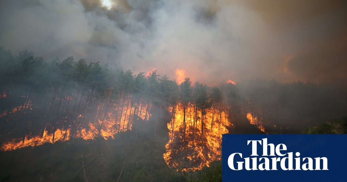 Turkey appeals for help to fight wildfires as heatwave continues
