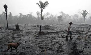 A Brazilian farmer walks through a burnt area of the Amazon rainforest, near Porto Velho, Rondonia state, Brazil in August 2019.