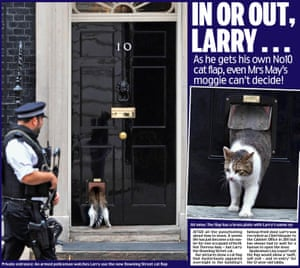 Daily Mail's April Fool cat flap.