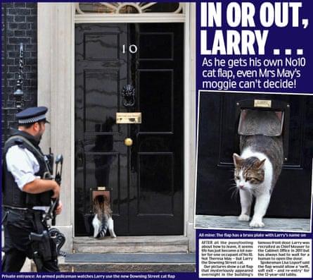 Daily Mail's April Fool cat flap.