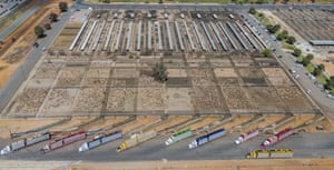 Wagga Wagga sheep sale yards. Yarding of 50,000 plus can be seen here during times of drought when farmers need to destock due to feed shortages.