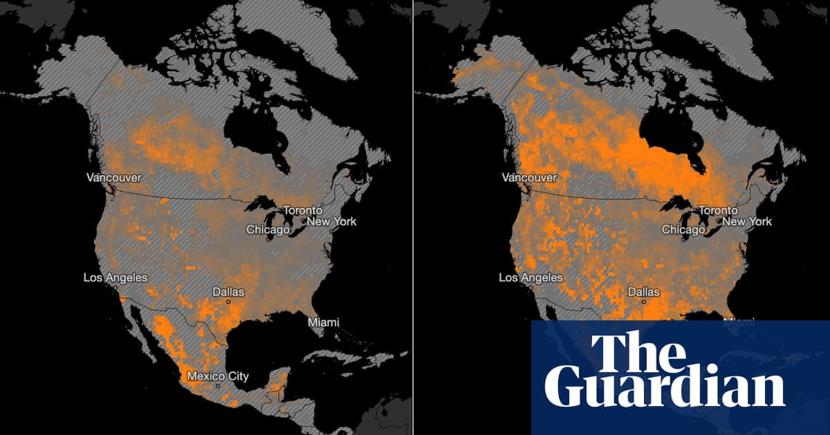 The climate disaster is here – this is what the future looks like
