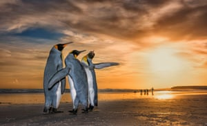 Highly commended: Three Kings by Wim van den Heever, South Africa