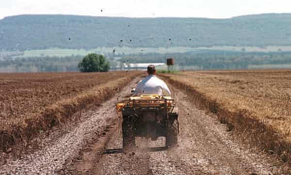 Wheat farming Gunnedah