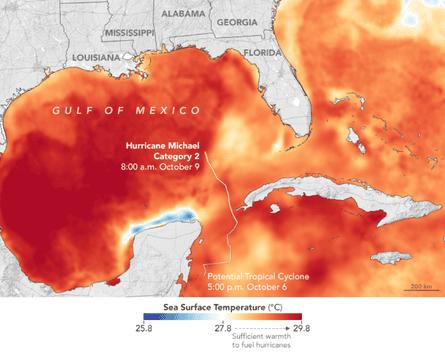 Water ocean temperatures around Florida as Hurricane Michael evolved.