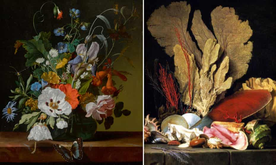 Flowers in a vase on a ledge with a dragonfly, caterpillar, and butterfly by Rachel Ruysch, left, and Tuft of Marine Plants, Shells and Corals by Anne Vallayer-Coster