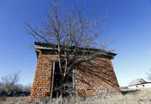 A tree grows out of a barn in the in the abandoned village of Krasnoselie within the exclusion zone around the Chernobyl nuclear reactor