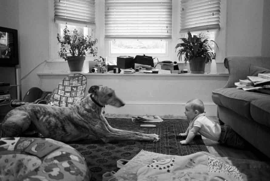 A photograph of Billingham's son Walter, with Ted the dog, taken around 2007.