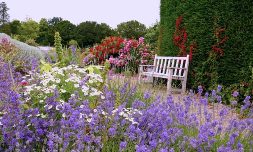 Scented garden at Burton Agnes Hall.