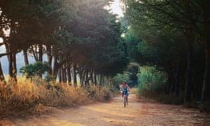 Cyclist on sandy track, evening, Ile de Porquerolles
