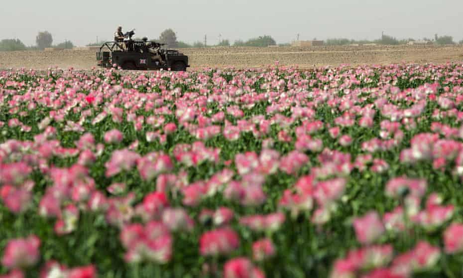 British troops patrol Helmand province in southern Afghanistan.