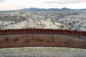 A dead coyote at the border fence in Arizona.