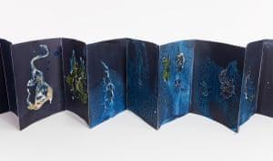 For Anna, Vol. III 16 pages of unique dynamic cyanotypes, algae and shoreline debris