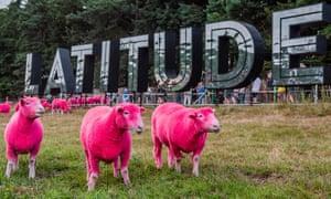 pink sheep at latitude