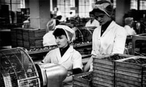 Factory work at Cadbury's in Bournville, 1954