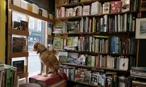 An independent bookshop in Brixton, south London.
