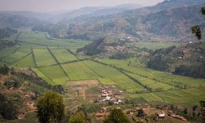 Countryside of the Rulindo district, Rwanda