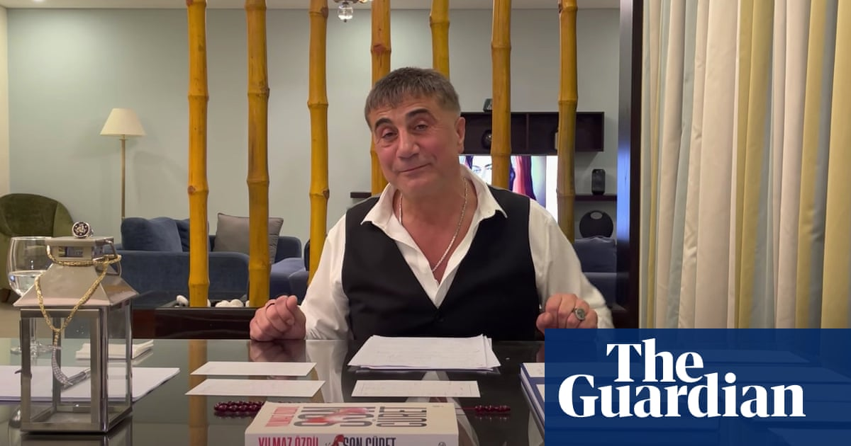 Mafia boss's YouTube claims rattle Turkish government