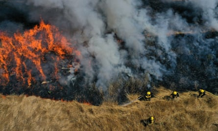 Marin county firefighters participate in a controlled burn training in June in San Rafael, California.