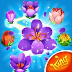 Blossom Blast Saga app logo