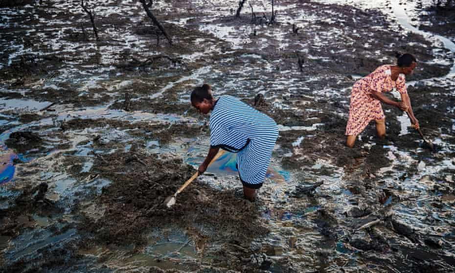 Woman search the oily creek for fish, edible snails, or kindling – but they find nothing they can use. Everything is coated in oil.