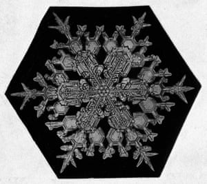 Close-up Of A Snowflake by Wilson Bentley